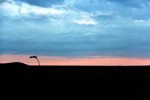 Mara sunrise scene
